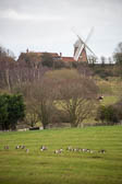 Oxford_Canal_[South]_Napton_Windmill-906